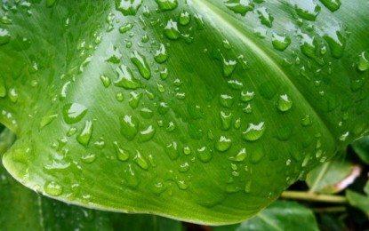 Mengenal Hujan (bagian 2)