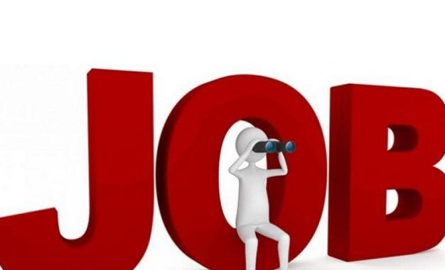 Cara Menemukan Pekerjaan yang Tepat