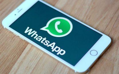 Wah, WhatsApp Sekarang Bisa Update Status?!